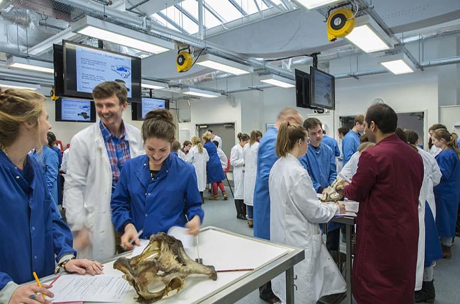 تحصیل پزشکی در دانشگاه کمبریج انگلستان