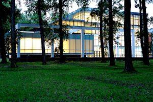 دانشگاه نووی ساد صربستان