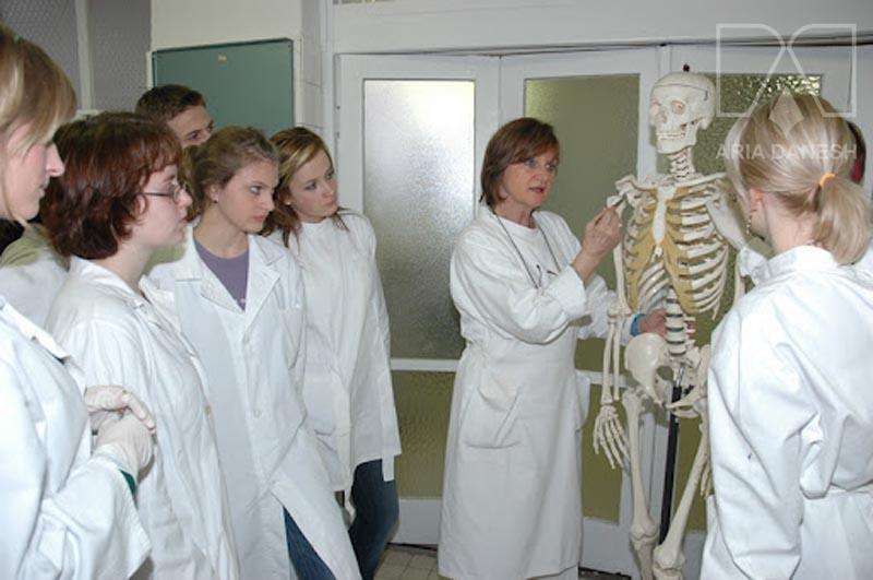 پزشکی اسلواکی