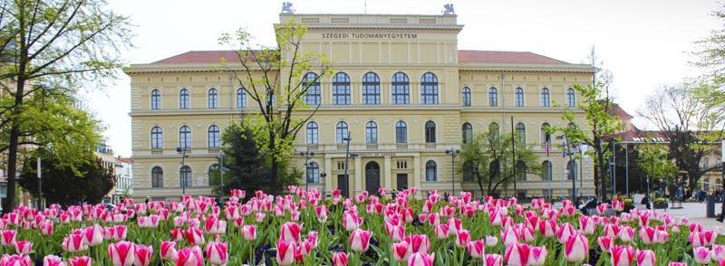 بهترین دانشگاههای مجارستان